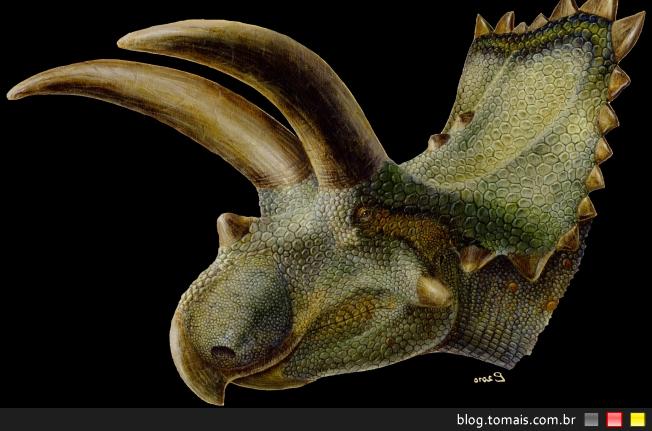 Coahuilaceratops magnacuerna